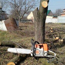 Архитектура, строительство и ремонт - Спил деревьев, веток, демонтаж построек , 0