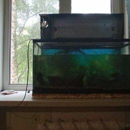 Аквариумы, террариумы, тумбы - 100 литров широкий аквариум, 0