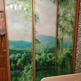 Шкафы, стенки, гарнитуры - Шкаф купе с фотопечатью , 0
