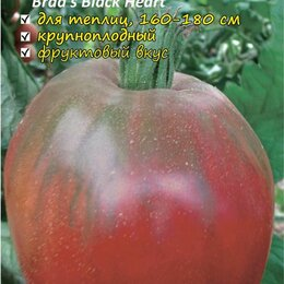 Семена - Томат Чёрное сердце брэда 5шт, 0