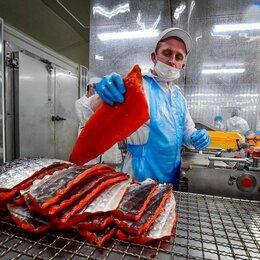 Производство - Продам завод по переработке рыбопродукции, 0