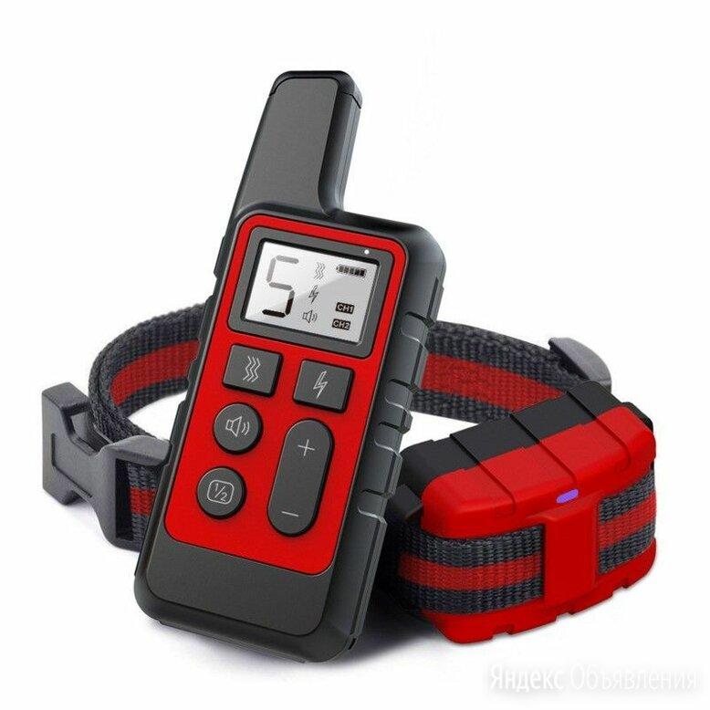 Электронный ошейник для дрессировки собак по цене 2490₽ - Ошейники , фото 0