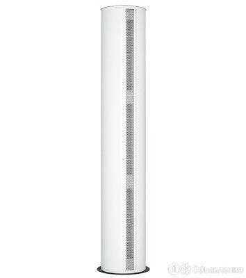 Водяная тепловая завеса Тепломаш КЭВ-90П6144W по цене 117840₽ - Тепловые завесы, фото 0
