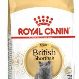 Корма  - British shorthair 13 кг royal canin, 0