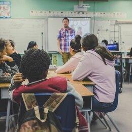 Учителя - Педагог по информатике, 0