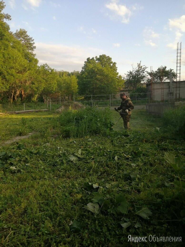 Покос травы, обрезка и опиловка деревьев по цене 100₽ - Бытовые услуги, фото 0