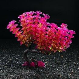 Растения для аквариумов и террариумов - Растение искусственное аквариумное, 19 см, 0