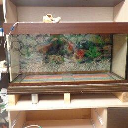 Аквариумы, террариумы, тумбы - Продам новый аквариум на 170 литров, 0