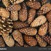 сменные по цене 30₽ - Семена, фото 1