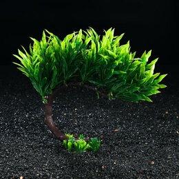 Растения для аквариумов и террариумов - Композиция с растениями искусственными для аквариума, 23 х 23 см, 0