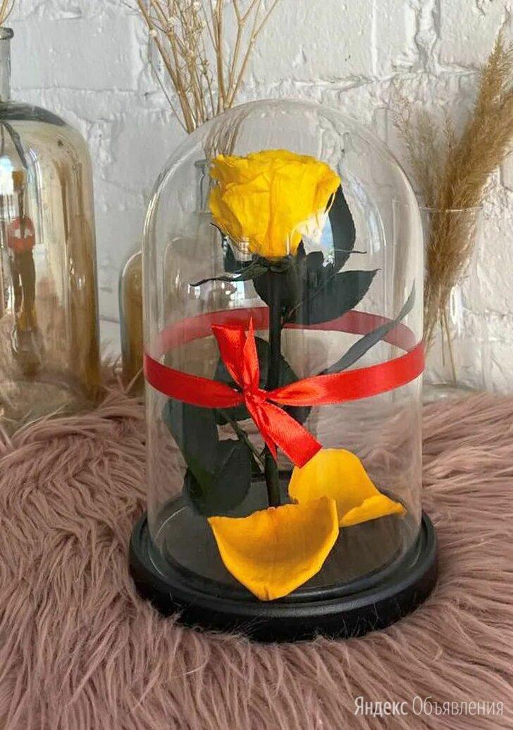 Роза в  стеклянной колбе. Премиум. (цвет в ассортименте!) по цене 1990₽ - Цветы, букеты, композиции, фото 0