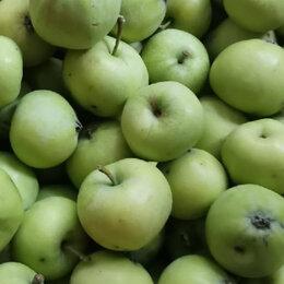 Продукты - Яблоки Белый налив, 0