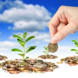 Другое - Ищу инвестора - прибыль 15 % в месяц, 0