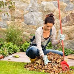 Бытовые услуги - Уборка на участке/огороде, 0
