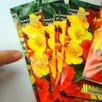 Вахта в Москве с питанием и проживанием от 20 смен фасовщик семян - Фасовщики, фото 3