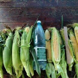 Продукты - Кукуруза сладкая, 0