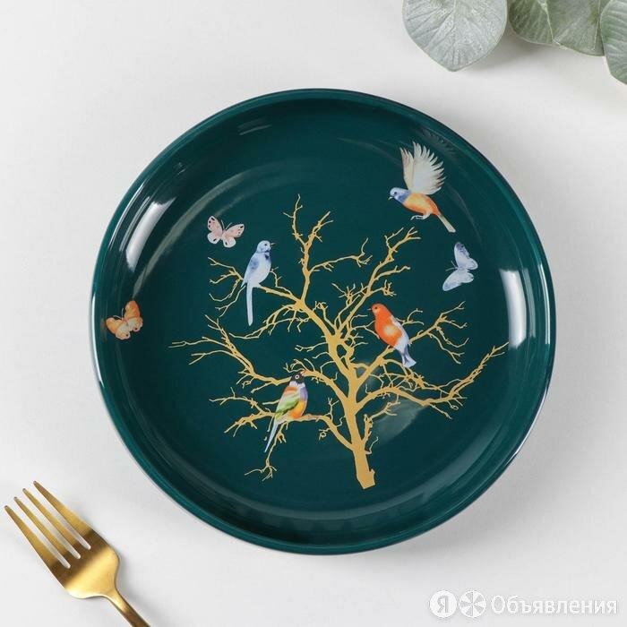 Тарелка обеденная 'Колибри', 21x4 см, цвет зелёный по цене 1777₽ - Тарелки, фото 0