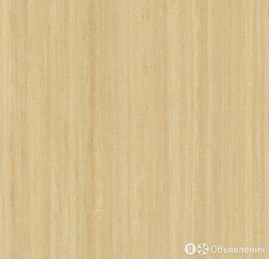 Натуральный линолеум Мармолеум стриато (Marmoleum striato) 5216 по цене 2060₽ - Комнатные растения, фото 0