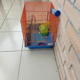 Клетки и домики  - 40 на 40 на 25 см. Клетка для хомяка. , 0