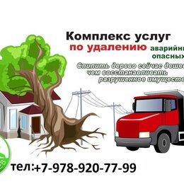 Бытовые услуги - Спил деревьев и покос травы, 0