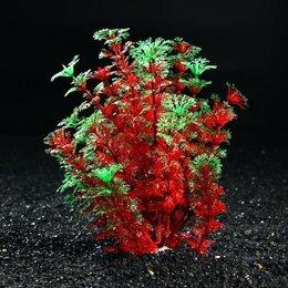 Растения для аквариумов и террариумов - Растение искусственное аквариумное, 17 х 15 х 20 см (комплект из 2 шт.), 0