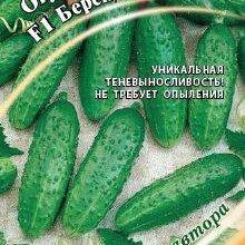 Семена - Огурец Берендей F1 (Гавриш), 0