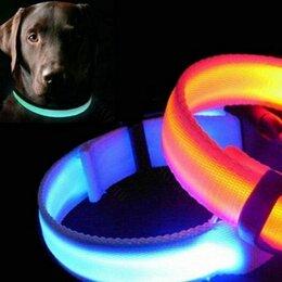 Ошейники  - Светящийся ошейник со светоотражателем, цвет микс, 0