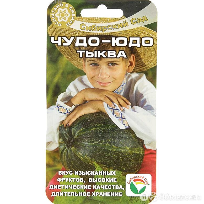 Сибсад Тыква Чудо-Юдо по цене 15₽ - Продукты, фото 0