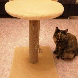 Когтеточки и комплексы  - Когтеточка для кошек , 0