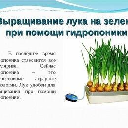 Аксессуары и средства для ухода за растениями - Луковое Счастье установка проращиватель выращиватель зелёного лука, 0
