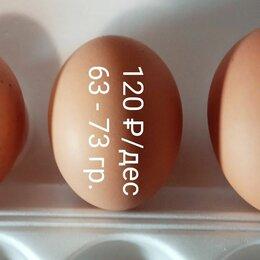 Продукты - Куриное яйцо , 0