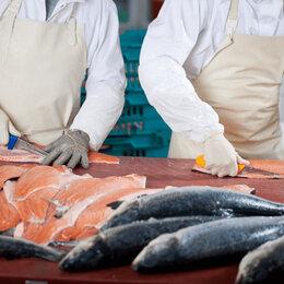 Специалисты - Сотрудники рыбоперерабатывающего производства, 0