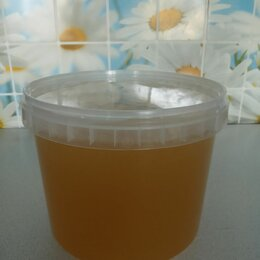 Продукты - Мёд липовый , 0