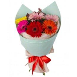 Цветы, букеты, композиции - Герберы букет  разноцветная мозаика, 0
