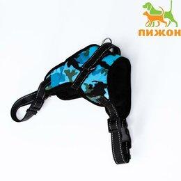 Шлейки  - Шлейка мягкая со светоотражающаяи, XL, расширенная (ОШ 54-69, ОГ 64-86 см), г..., 0