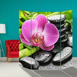 """Ширмы - Ширма """"Розовая орхидея на камнях"""", 160 × 160 см, 0"""