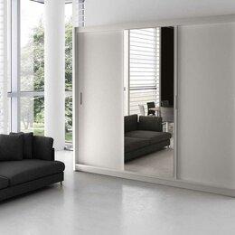 Шкафы, стенки, гарнитуры - Шкаф купе с зеркалом ТОМИРИС 3, 0