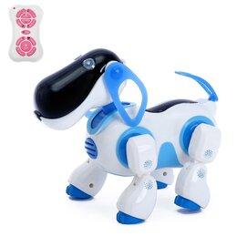 """Радиоуправляемые игрушки - Робот р/у """"Киберпес Ки-Ки"""", 0"""