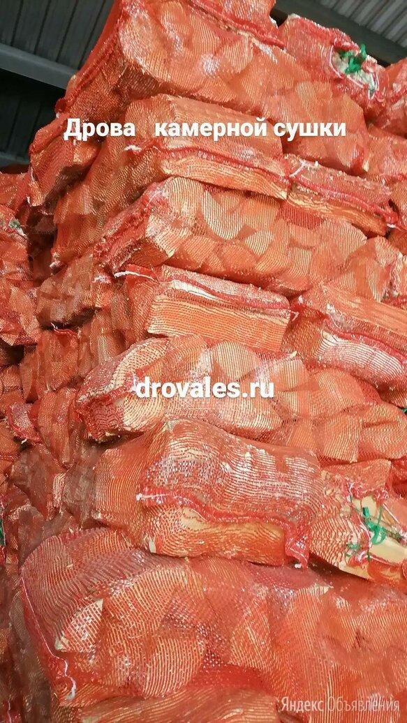 Сухие дрова в сетках по цене 100₽ - Дрова, фото 0