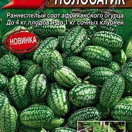 Семена - Мелотрия (Мышиная дыня) Полосатик (Аэлита), 0
