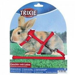 Шлейки и ошейники  - Шлейка для грызунов 8ммх1,2м (для кроликов), 0
