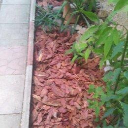Субстраты, грунты, мульча - Мульчирование лиственницы , 0