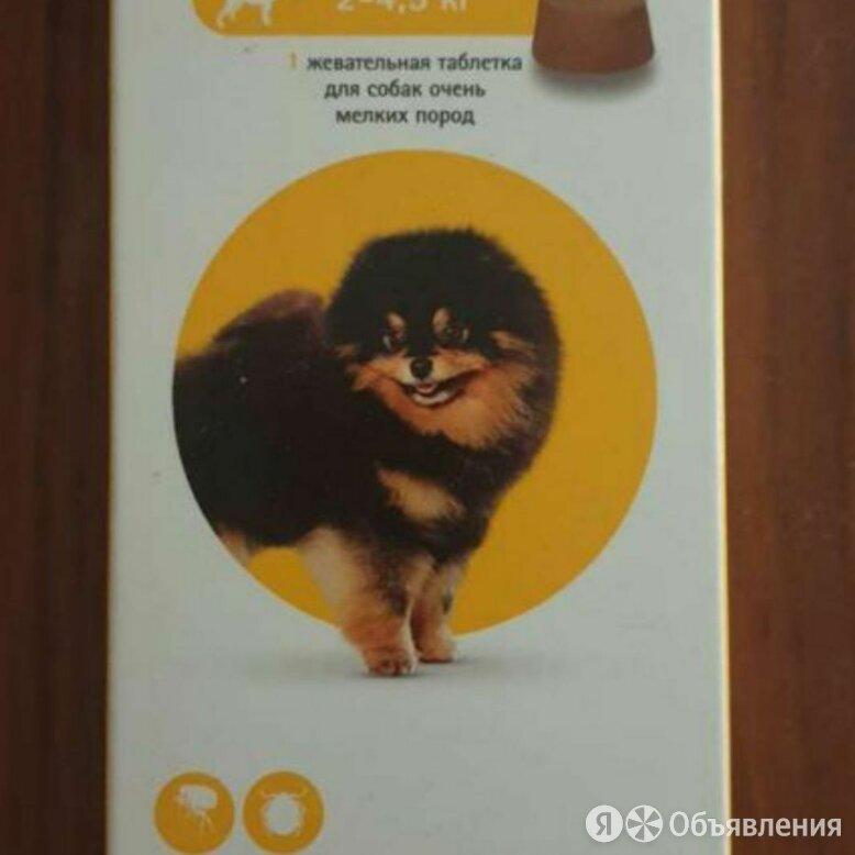 Intervet бравекто жевательная таблетка для собак 2-4,5кг 112,5мг по цене 1000₽ - Прочие товары для животных, фото 0