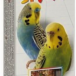Игрушки и декор  - FIORY палочки для попугаев STICKS с фруктами 2х30 г , 0