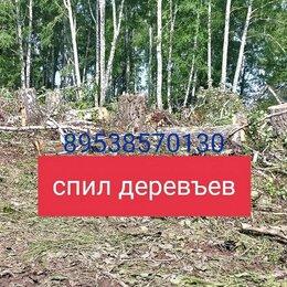 Прочие услуги - Профессиональный спил деревъев, 0