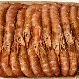 Продукты - Креветка размер 90-120 х/к. Опт от 5 кг., 0