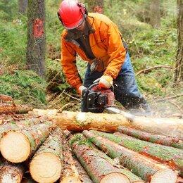 Рабочие - Вальщики леса, 0