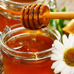 Продукты - Мёд разнотравие 2021 г.  3 Литра, 0