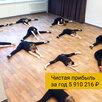 Готовая школа танцев в Сыктывкаре. Чистыми 5.9 млн в год по цене 6200000₽ - Сфера услуг, фото 1