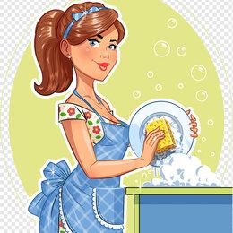 Мойщики - Посудомойщик, 0